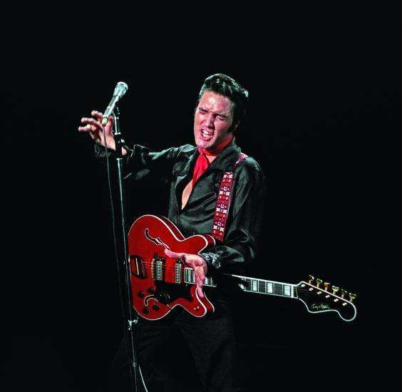 Elvis 13.jpg